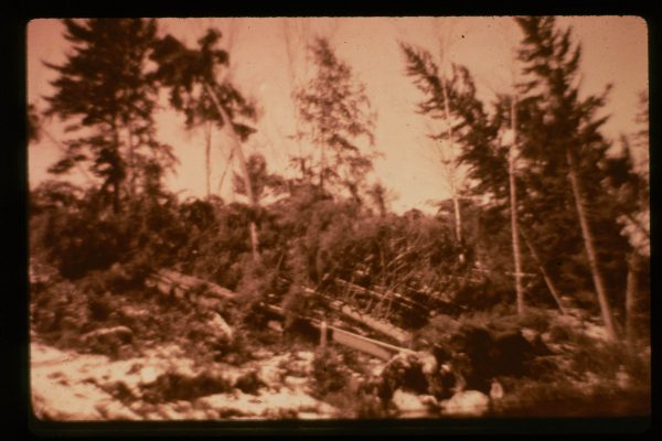 A-1-061-Island Blowdown_50