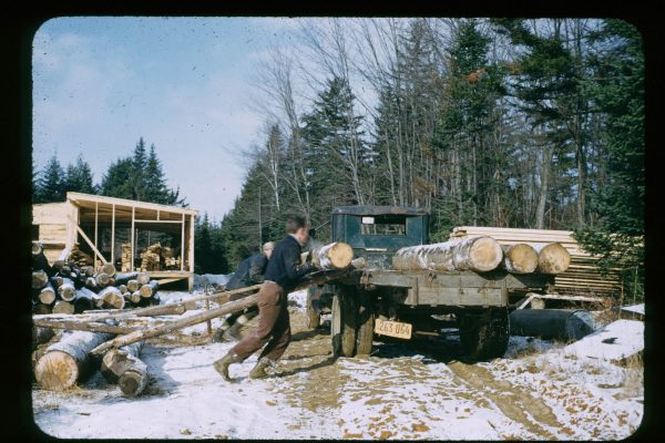 A-1-111-logs for dininghall