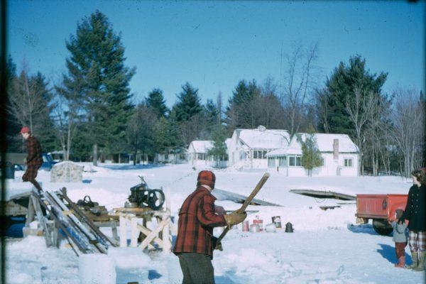 A-1-113-logs at sawmill
